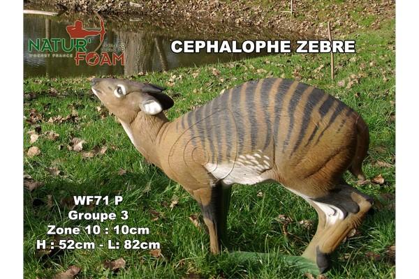 3D-Tier Naturfoam Zebraducker