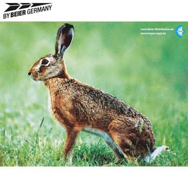 Tierbildauflage eines Feldhasen ist von By Beier Gernany