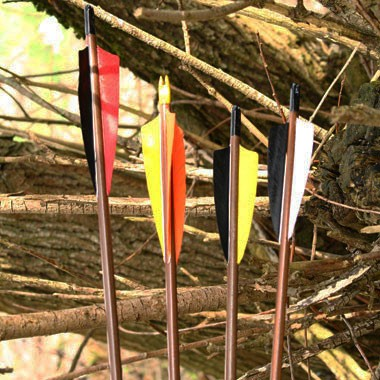 Standard Wooden Arrows